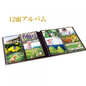 12-album_ico-1